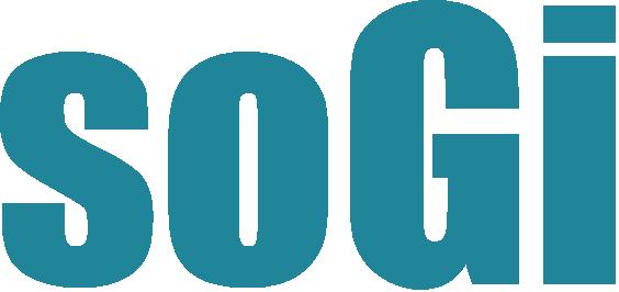Como funcinonam os Filtros e Auto-filtros no SOGI